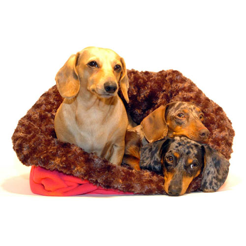 Chocolate and Berry Noodle Canoodle Dachshund Sack Bed