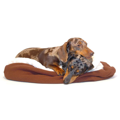 Vanilla and Chocolate Noodle Canoodle Dachshund Sack Bed