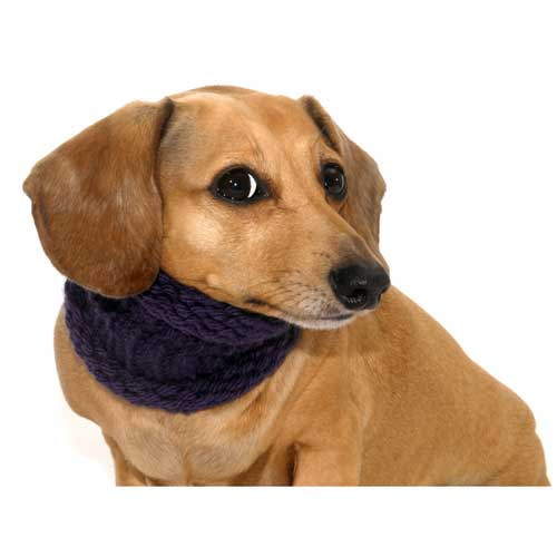 Grape Noodle Boodle Dachshund Neck Warmer