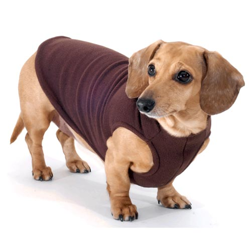Chocolate Noodle Stroodle Dachshund Sweater