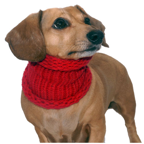 Cherry Red Noodle Boodle Dachshund Neck Warmer